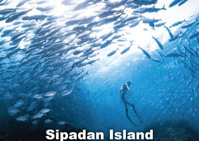 اجمل 30 جزيرة في ماليزيا 2021 (24)