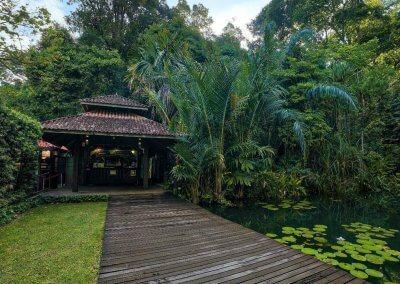 تقرير كامل عن جزيرة بينانج (40)