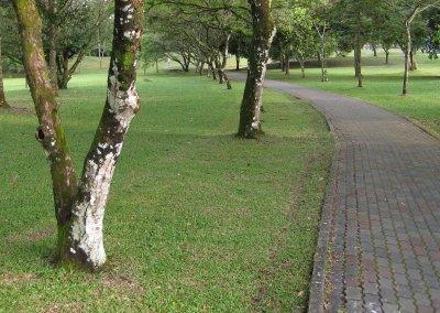 Pathway through the Gardens