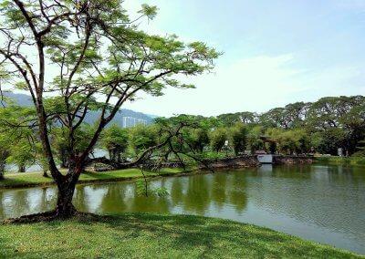 حدائق بحيرة تايبينغ Taiping lake Gardens (3)