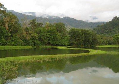 حدائق بحيرة تايبينغ Taiping lake Gardens (8)