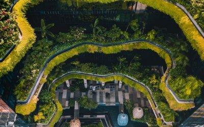 حديقة بابل المعلقة في بارك رويال سنغافورة