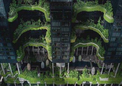 حديقة بابل المعلقة في بارك رويال سنغافورة (3)