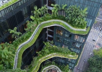 حديقة بابل المعلقة في بارك رويال سنغافورة (37)