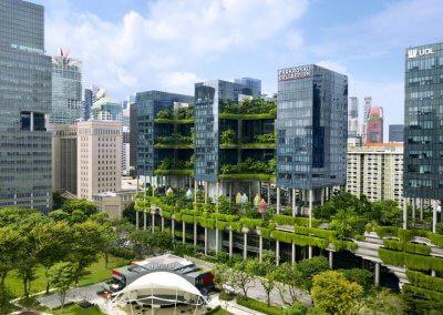 حديقة بابل المعلقة في بارك رويال سنغافورة (38)