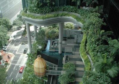 حديقة بابل المعلقة في بارك رويال سنغافورة (4)