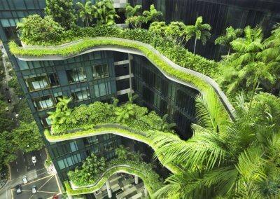حديقة بابل المعلقة في بارك رويال سنغافورة (5)