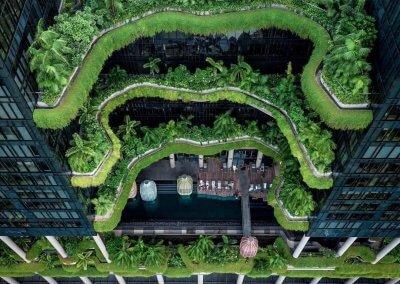 حديقة بابل المعلقة في بارك رويال سنغافورة (8)