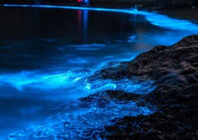 شاطئ الدموع الزرقاء في ميري سراواك (1)
