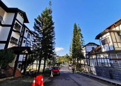 شقة في مرتفعات كاميرون (15)