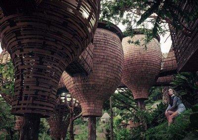 فندق بيت الشجرة كيمالا في بوكيت تايلاند (6)