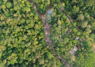 مكان جديد لمحبي التخييم في الغابات (13)