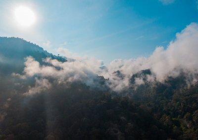 مكان جديد لمحبي التخييم في الغابات (14)