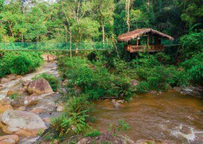 مكان جديد لمحبي التخييم في الغابات (15)