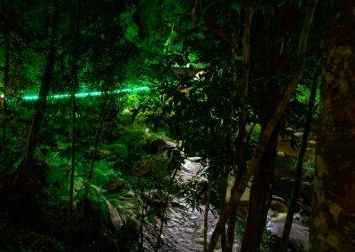 مكان جديد لمحبي التخييم في الغابات (22)
