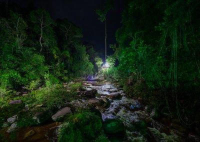 مكان جديد لمحبي التخييم في الغابات (23)