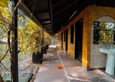 مكان جديد لمحبي التخييم في الغابات (28)