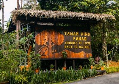 مكان جديد لمحبي التخييم في الغابات (3)