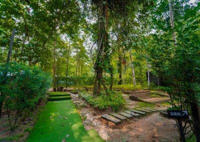 مكان جديد لمحبي التخييم في الغابات (33)