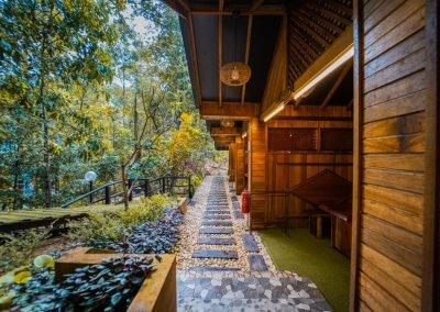 مكان جديد لمحبي التخييم في الغابات (35)