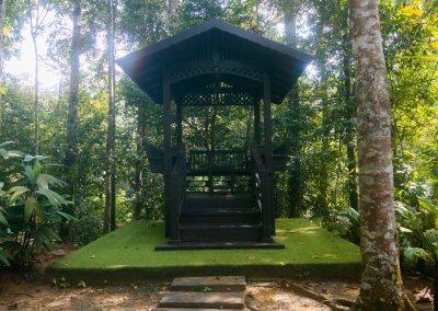 مكان جديد لمحبي التخييم في الغابات (39)
