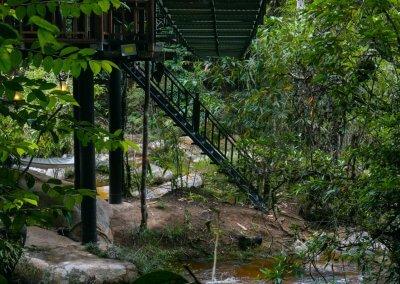 مكان جديد لمحبي التخييم في الغابات (42)