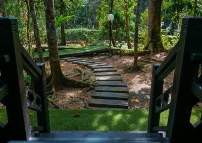 مكان جديد لمحبي التخييم في الغابات (46)