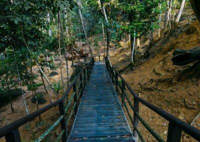 مكان جديد لمحبي التخييم في الغابات (48)