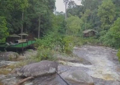مكان جديد لمحبي التخييم في الغابات (59)