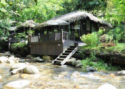 مكان جديد لمحبي التخييم في الغابات (8)