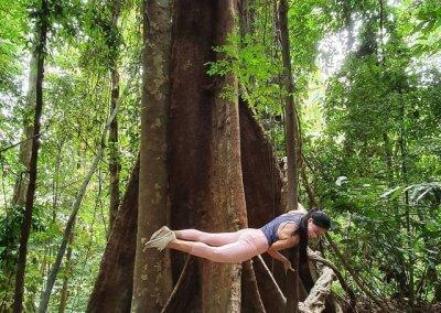 5. Kota Damansara Community Forest Park
