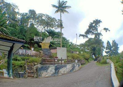 Maxwell Hill Bukit Larut بوكت لاروت (13)