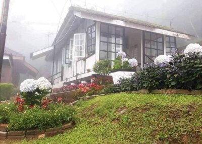 Maxwell Hill Bukit Larut بوكت لاروت (18)