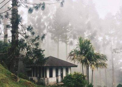 Maxwell Hill Bukit Larut بوكت لاروت (20)
