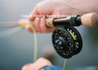 افضل 10 اماكن لصيد الاسماك في ماليزيا (1)