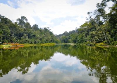افضل 10 اماكن لصيد الاسماك في ماليزيا (6)