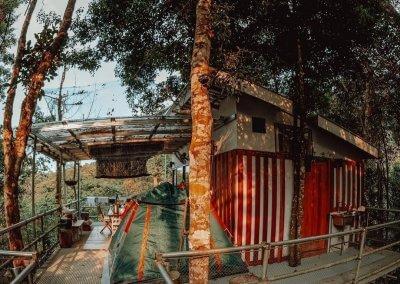 البقاء بين الاشجار في هذه الطبيعة المذهلة في باهانغ (10)