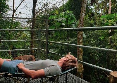 البقاء بين الاشجار في هذه الطبيعة المذهلة في باهانغ (11)