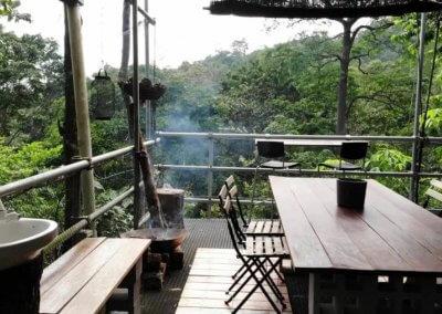 البقاء بين الاشجار في هذه الطبيعة المذهلة في باهانغ (2)
