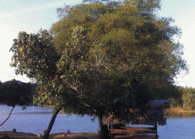 بحيرة بيريس في ولاية قدح (11)