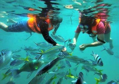 جزيرة بولاو بايار كنز الشعب المرجانية (4)