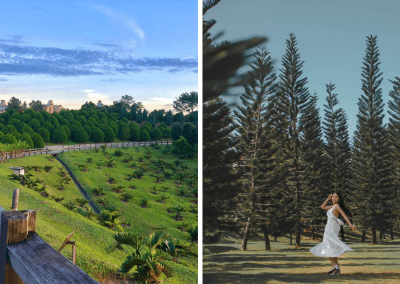حديقة ذات طراز أوروبي مخبأة في بوتراجايا (1)
