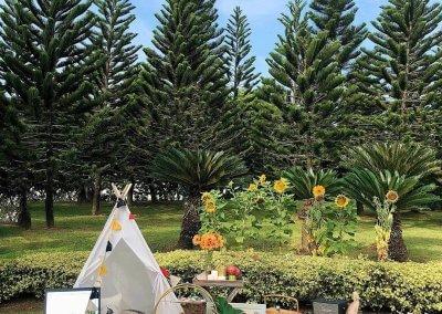 حديقة ذات طراز أوروبي مخبأة في بوتراجايا (2)