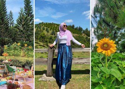 حديقة ذات طراز أوروبي مخبأة في بوتراجايا (4)