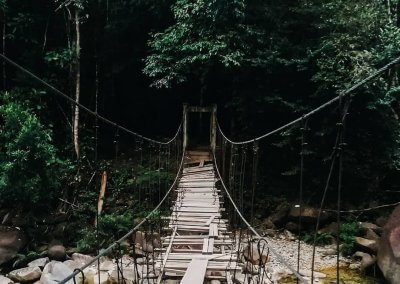 سيتيو ترينجانو الاراضي الرطبة في ماليزيا (7)