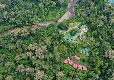 غابات ماليزيا عمرها اكثر من 130 مليون سنة (17)