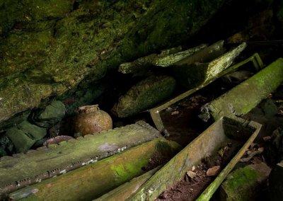 غابات ماليزيا عمرها اكثر من 130 مليون سنة (19)