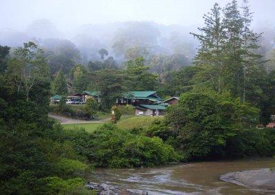 غابات ماليزيا عمرها اكثر من 130 مليون سنة (9)