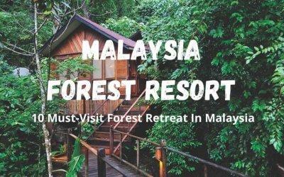 فنادق في غابات ماليزيا