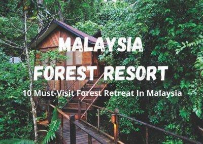فنادق في غابات ماليزيا (1)